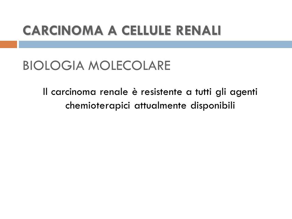 CARCINOMA A CELLULE RENALI CARCINOMA A CELLULE RENALI BIOLOGIA MOLECOLARE Il carcinoma renale è resistente a tutti gli agenti chemioterapici attualmente disponibili