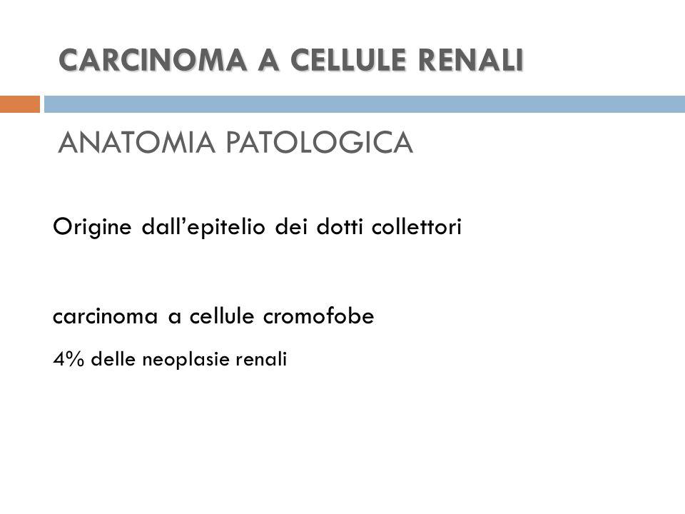 CARCINOMA A CELLULE RENALI CARCINOMA A CELLULE RENALI ANATOMIA PATOLOGICA Origine dall'epitelio dei dotti collettori carcinoma a cellule cromofobe 4% delle neoplasie renali