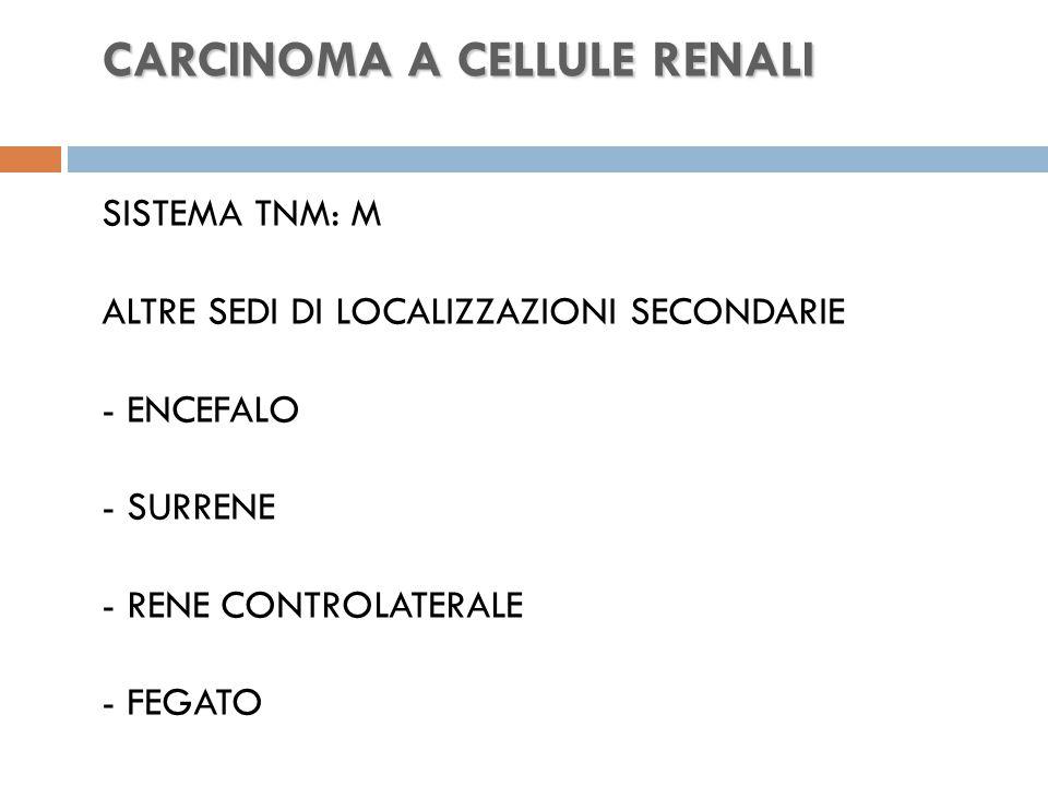 CARCINOMA A CELLULE RENALI CARCINOMA A CELLULE RENALI SISTEMA TNM: M ALTRE SEDI DI LOCALIZZAZIONI SECONDARIE - ENCEFALO - SURRENE - RENE CONTROLATERALE - FEGATO