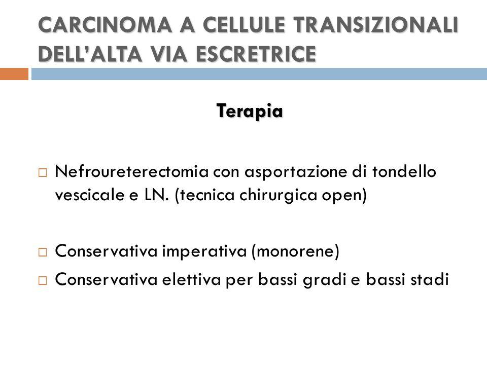 CARCINOMA A CELLULE TRANSIZIONALI DELL'ALTA VIA ESCRETRICE Terapia  Nefroureterectomia con asportazione di tondello vescicale e LN.