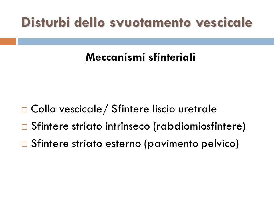 Meccanismi sfinteriali  Collo vescicale/ Sfintere liscio uretrale  Sfintere striato intrinseco (rabdiomiosfintere)  Sfintere striato esterno (pavimento pelvico) Disturbi dello svuotamento vescicale