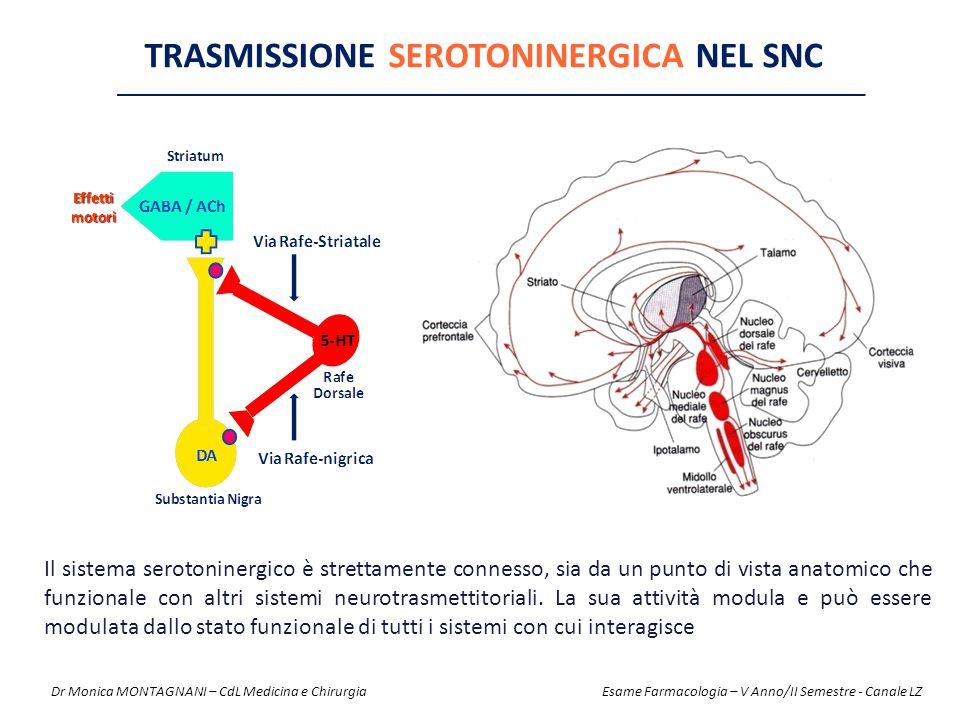 TRASMISSIONE SEROTONINERGICA NEL SNC Il sistema serotoninergico è strettamente connesso, sia da un punto di vista anatomico che funzionale con altri s