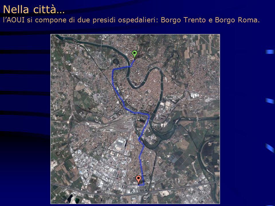 Nella città… l'AOUI si compone di due presidi ospedalieri: Borgo Trento e Borgo Roma.