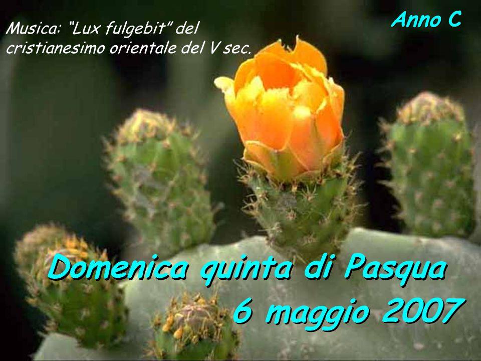 Anno C Domenica quinta di Pasqua 6 maggio 2007 Musica: Lux fulgebit del cristianesimo orientale del V sec.