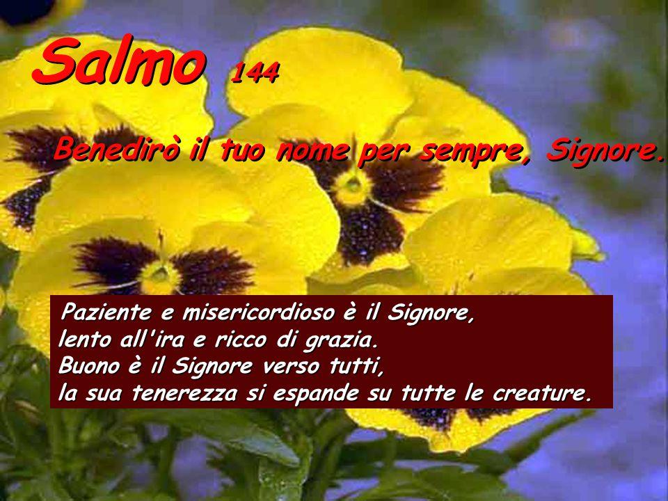 At 14,21b-27 In quel tempo, Paolo e Bàrnaba ritornarono a Listra, Icònio e Antiòchia, rianimando i discepoli ed esortandoli a restare saldi nella fede