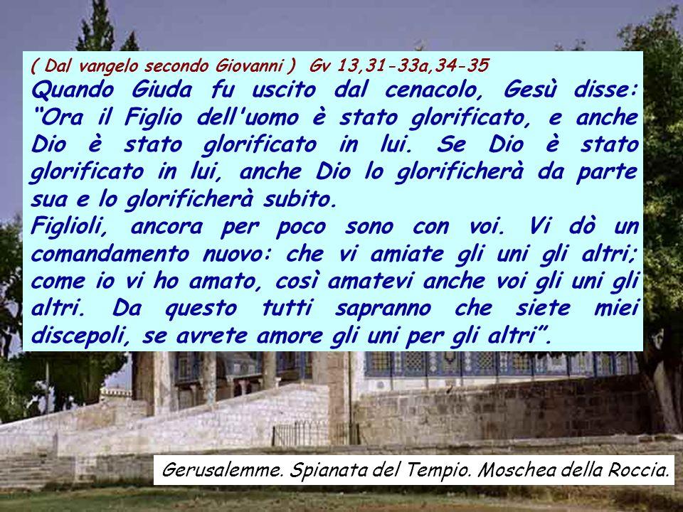 ( Dal vangelo secondo Giovanni ) Gv 13,31-33a,34-35 Quando Giuda fu uscito dal cenacolo, Gesù disse: Ora il Figlio dell uomo è stato glorificato, e anche Dio è stato glorificato in lui.