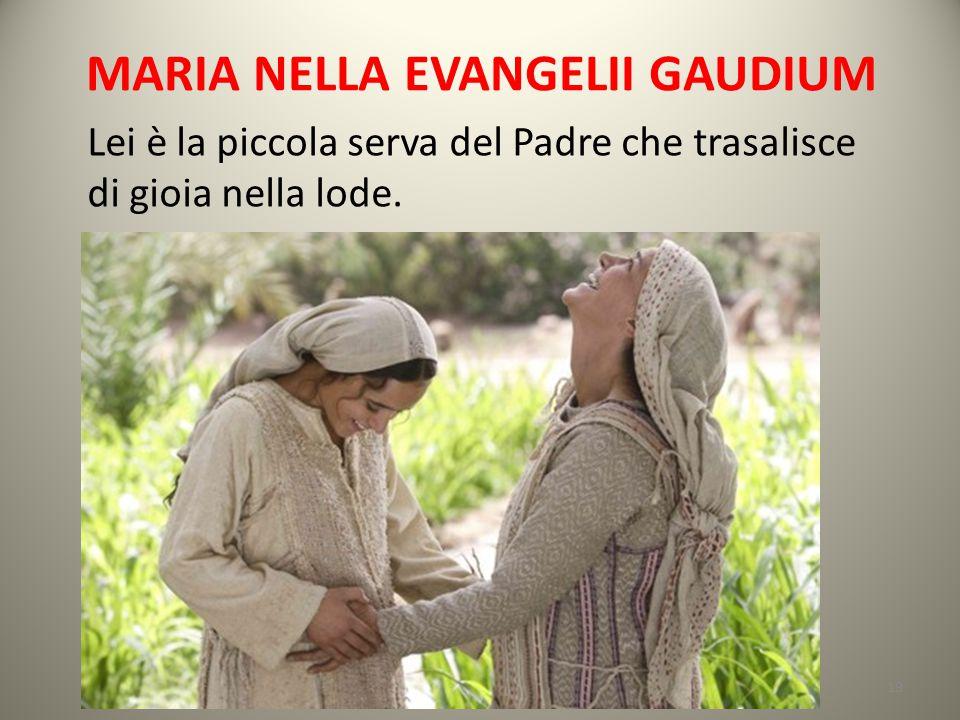 MARIA NELLA EVANGELII GAUDIUM Lei è la piccola serva del Padre che trasalisce di gioia nella lode. 19