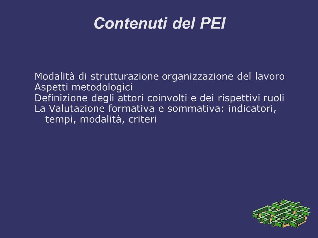 Contenuti del PEI Modalità di strutturazione organizzazione del lavoro Aspetti metodologici Definizione degli attori coinvolti e dei rispettivi ruoli