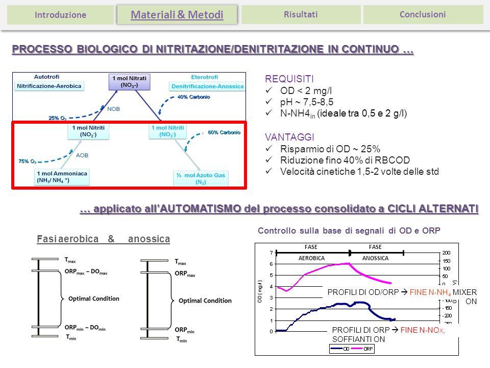 VANTAGGI Risparmio di OD ~ 25% Riduzione fino 40% di RBCOD Velocità cinetiche 1,5-2 volte delle std REQUISITI OD < 2 mg/l pH ~ 7,5-8,5 N-NH4 in (ideal