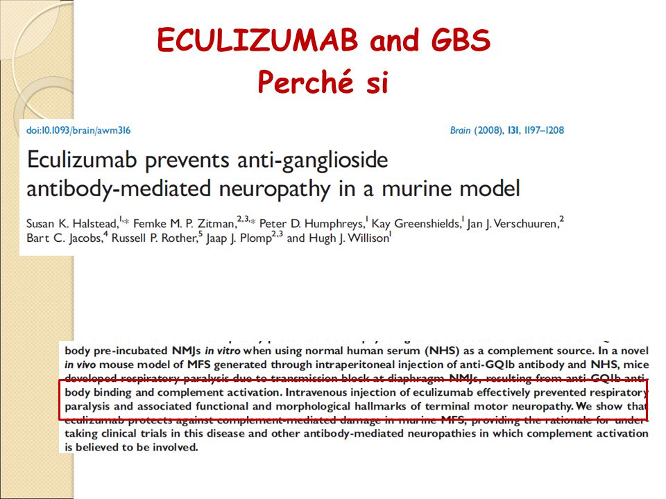 ECULIZUMAB and GBS Perché si