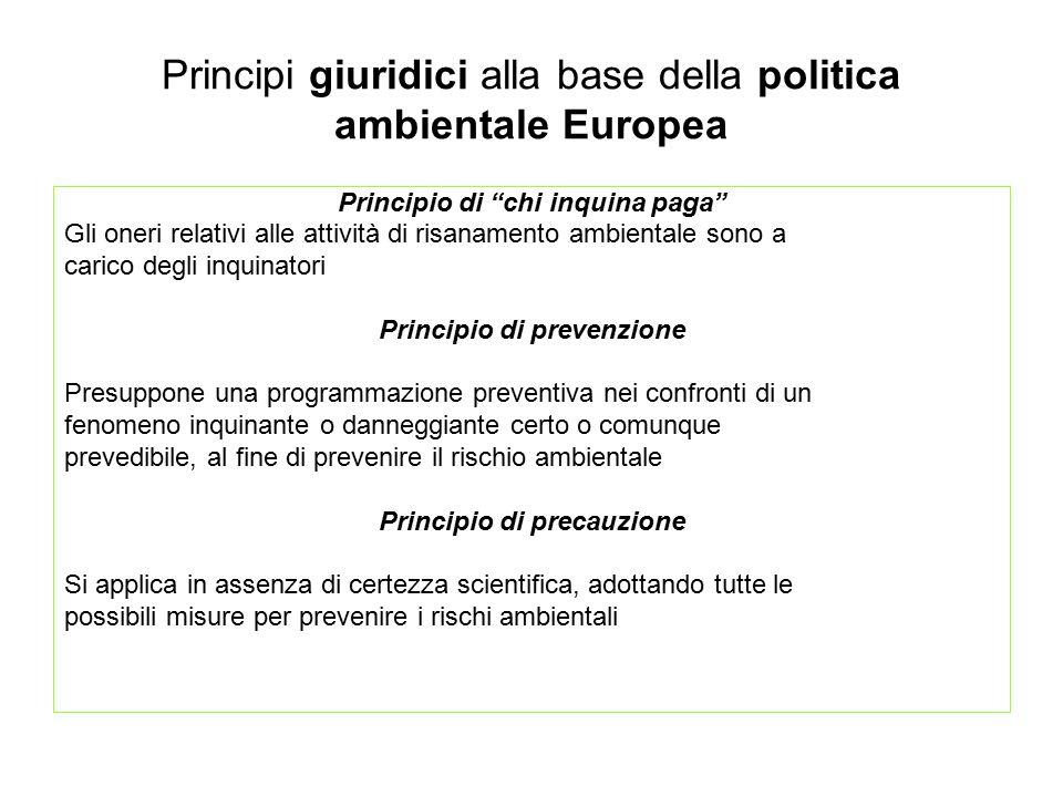 """Principi giuridici alla base della politica ambientale Europea Principio di """"chi inquina paga"""" Gli oneri relativi alle attività di risanamento ambient"""