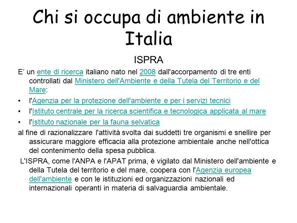Chi si occupa di ambiente in Italia ISPRA E' un ente di ricerca italiano nato nel 2008 dall'accorpamento di tre enti controllati dal Ministero dell'Am