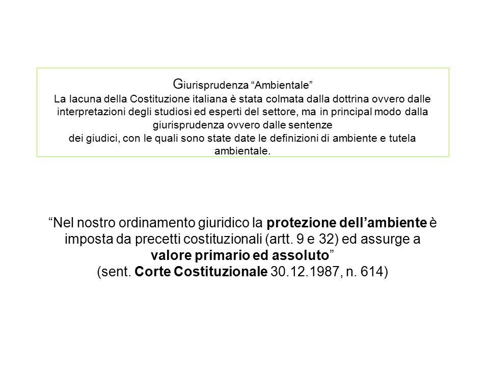 """G iurisprudenza """"Ambientale"""" La lacuna della Costituzione italiana è stata colmata dalla dottrina ovvero dalle interpretazioni degli studiosi ed esper"""