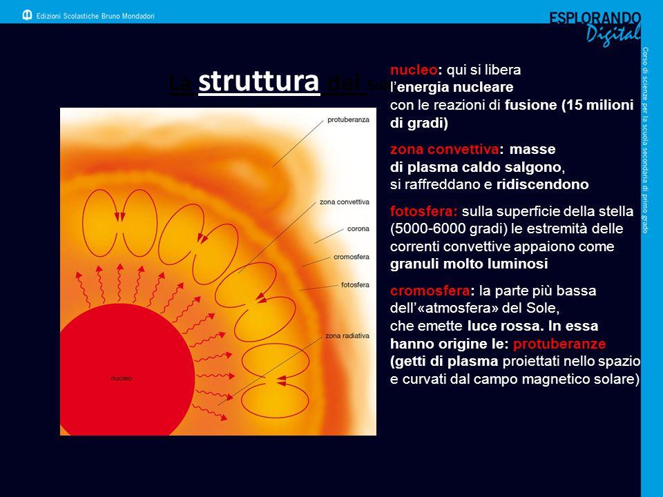 La struttura del Sole nucleo: qui si libera l'energia nucleare con le reazioni di fusione (15 milioni di gradi) zona convettiva: masse di plasma caldo