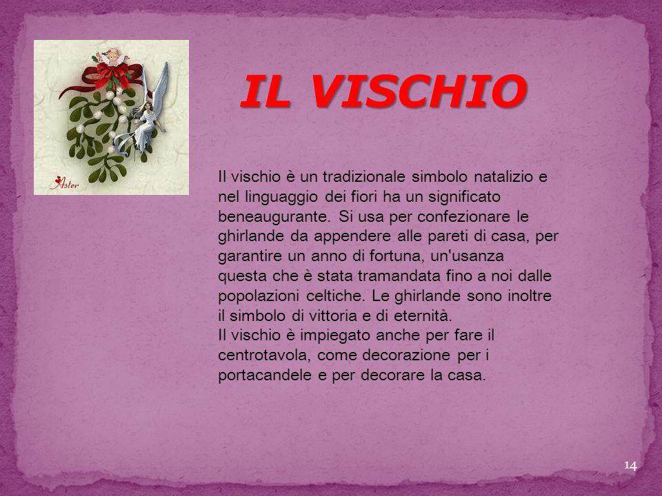 IL VISCHIO Il vischio è un tradizionale simbolo natalizio e nel linguaggio dei fiori ha un significato beneaugurante.