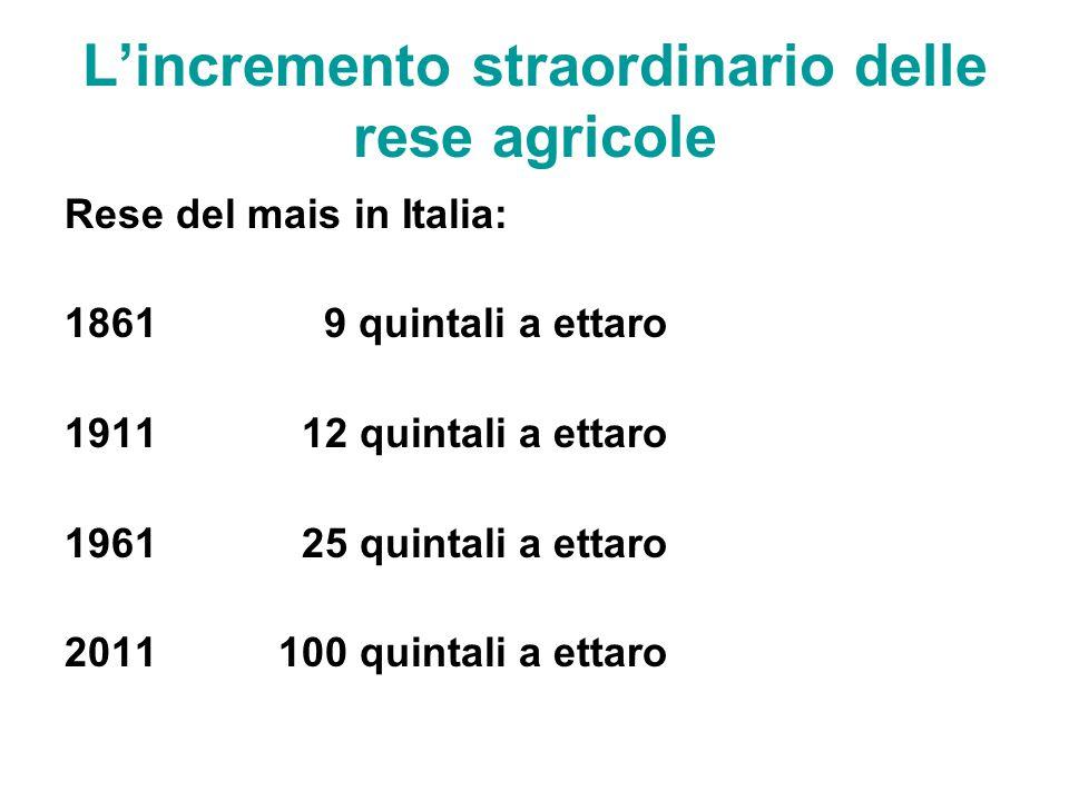 L'incremento straordinario delle rese agricole Rese del mais in Italia: 1861 9 quintali a ettaro 1911 12 quintali a ettaro 1961 25 quintali a ettaro 2