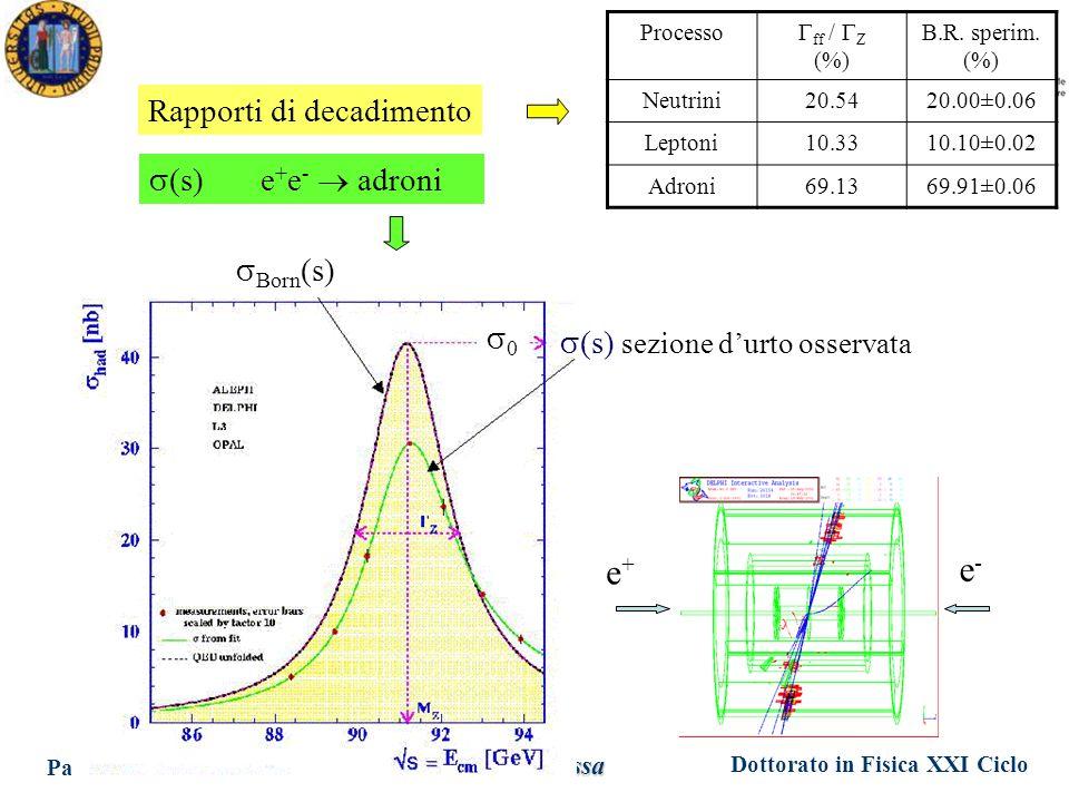 Dottorato in Fisica XXI Ciclo Padova 17 Maggio 2006 Ezio Torassa  (s) e + e -  adroni  Born (s)  (s) sezione d'urto osservata 00 Rapporti di decadimento e+e+ e-e- Processo  ff /  Z (%) B.R.