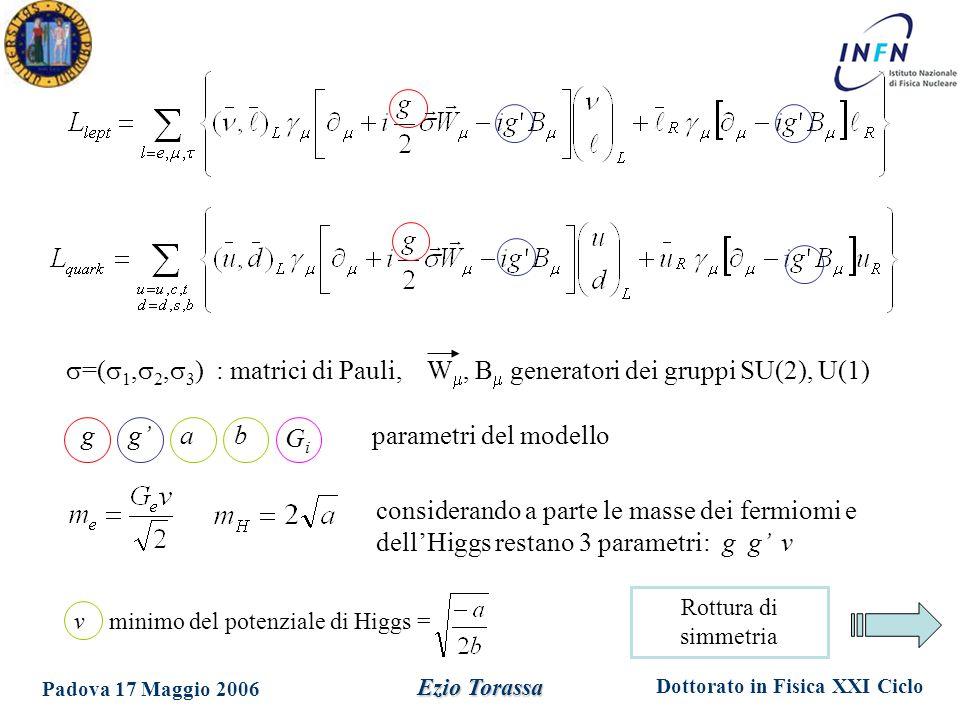 Dottorato in Fisica XXI Ciclo Padova 17 Maggio 2006 Ezio Torassa  =(  1,  2,  3 ) : matrici di Pauli, W , B  generatori dei gruppi SU(2), U(1) g g' a b v minimo del potenziale di Higgs = GiGi parametri del modello considerando a parte le masse dei fermiomi e dell'Higgs restano 3 parametri: g g' v Rottura di simmetria