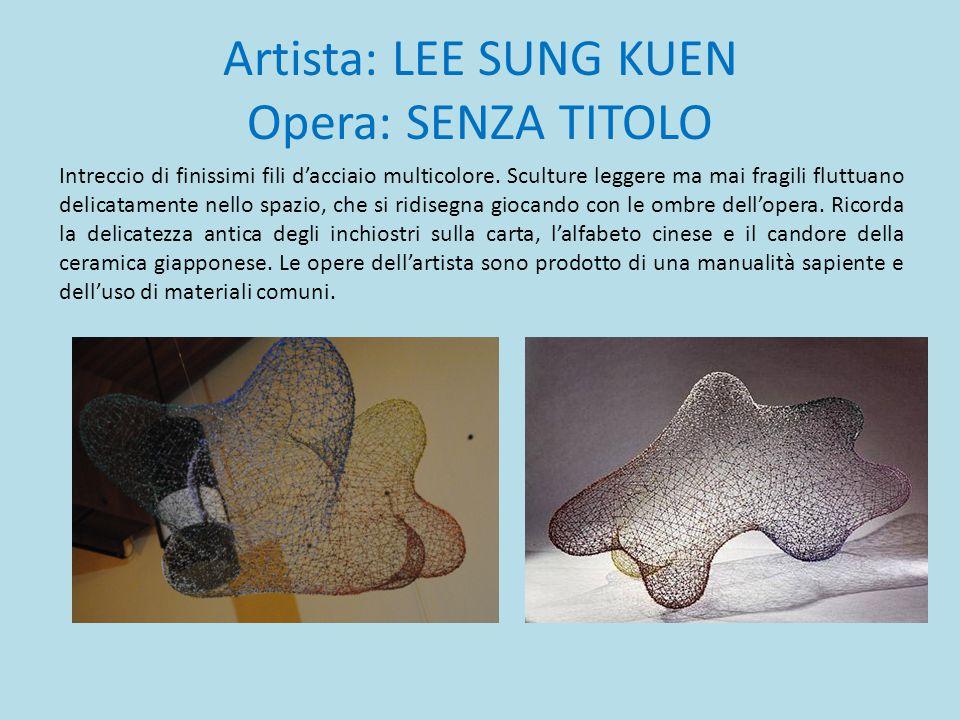 Artista: LEE SUNG KUEN Opera: SENZA TITOLO Intreccio di finissimi fili d'acciaio multicolore. Sculture leggere ma mai fragili fluttuano delicatamente