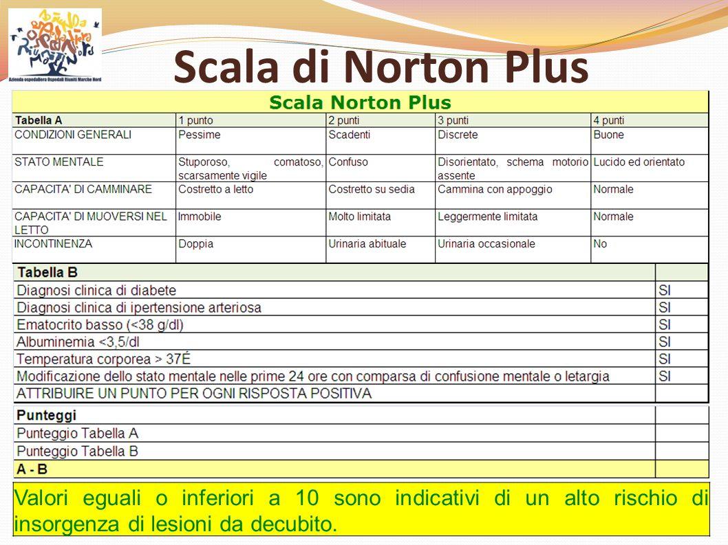 Scala di Norton Plus Valori eguali o inferiori a 10 sono indicativi di un alto rischio di insorgenza di lesioni da decubito.