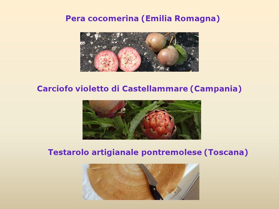Pera cocomerina (Emilia Romagna) Carciofo violetto di Castellammare (Campania) Testarolo artigianale pontremolese (Toscana)
