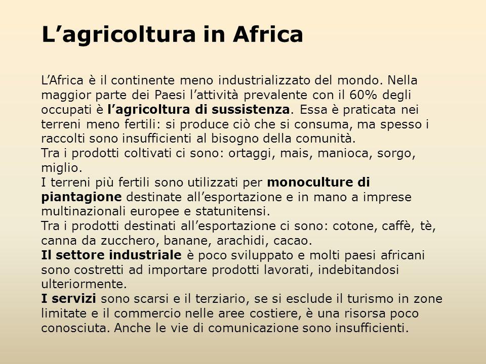 L'agricoltura in Africa L'Africa è il continente meno industrializzato del mondo. Nella maggior parte dei Paesi l'attività prevalente con il 60% degli
