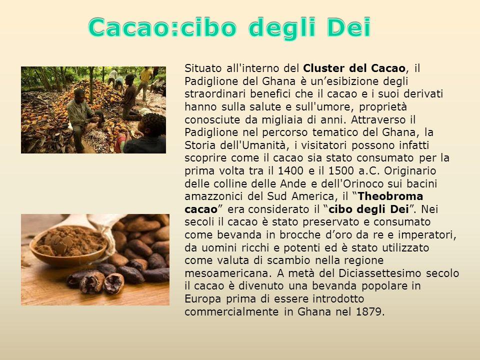 Situato all'interno del Cluster del Cacao, il Padiglione del Ghana è un'esibizione degli straordinari benefici che il cacao e i suoi derivati hanno su