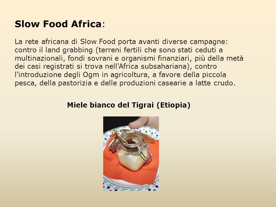Slow Food Africa: La rete africana di Slow Food porta avanti diverse campagne: contro il land grabbing (terreni fertili che sono stati ceduti a multin
