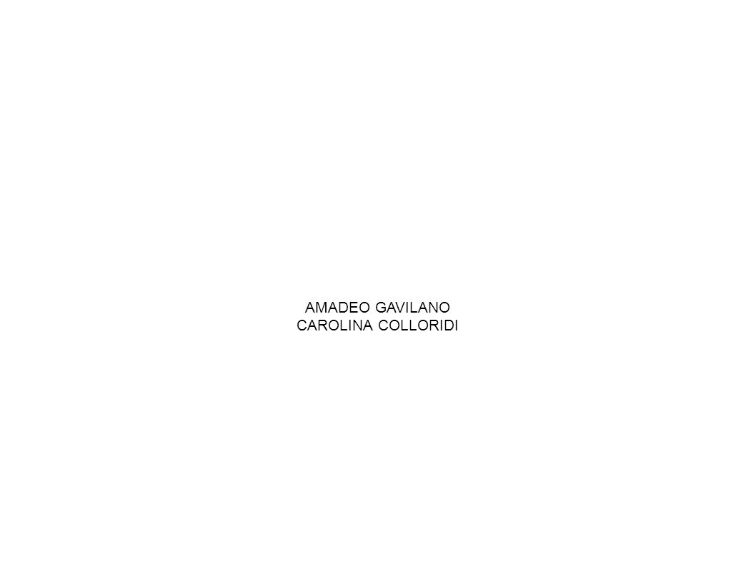 AMADEO GAVILANO CAROLINA COLLORIDI