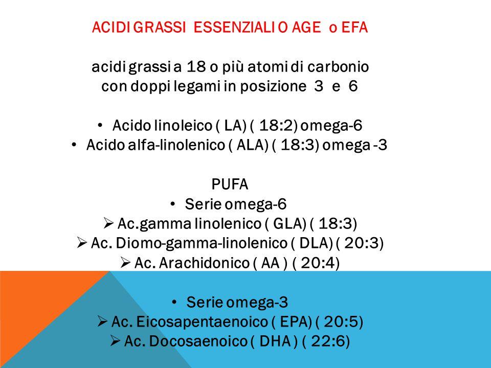 ACIDI GRASSI ESSENZIALI O AGE o EFA acidi grassi a 18 o più atomi di carbonio con doppi legami in posizione 3 e 6 Acido linoleico ( LA) ( 18:2) omega-