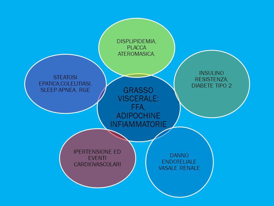 GRASSO VISCERALE: FFA, ADIPOCHINE INFIAMMATORIE DISPLIPIDEMIA, PLACCA ATEROMASICA, INSULINO RESISTENZA, DIABETE TIPO 2 DANNO ENDOTELIALE VASALE RENALE