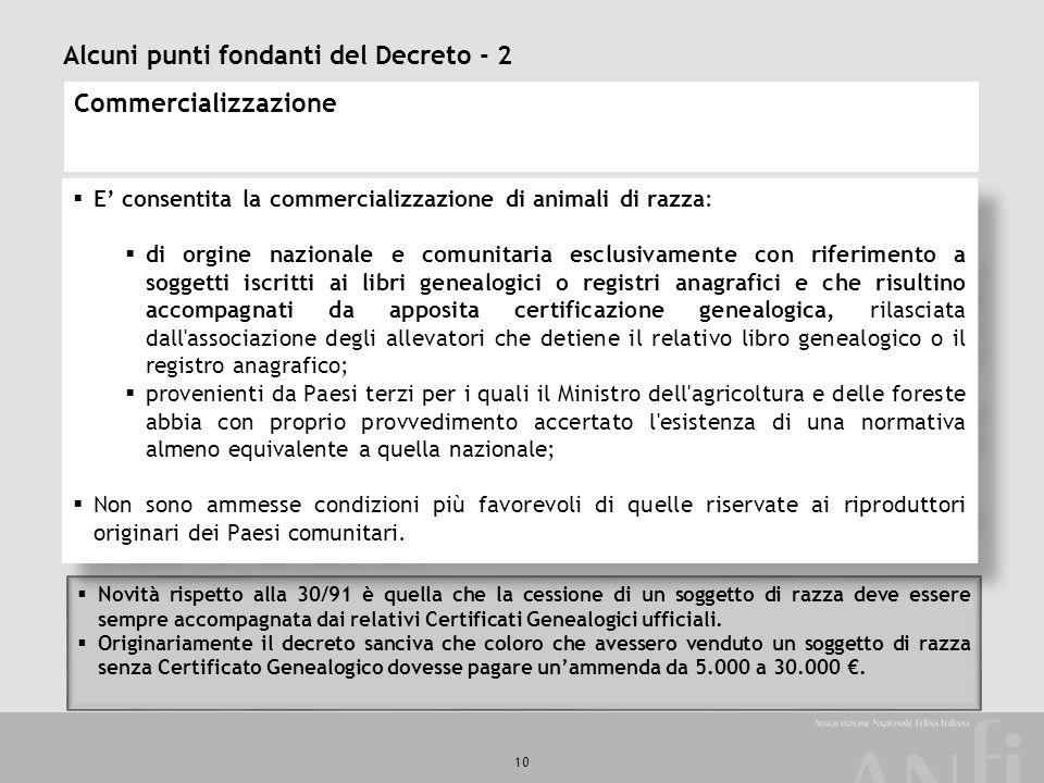 10 Alcuni punti fondanti del Decreto - 2 Commercializzazione  E' consentita la commercializzazione di animali di razza:  di orgine nazionale e comun