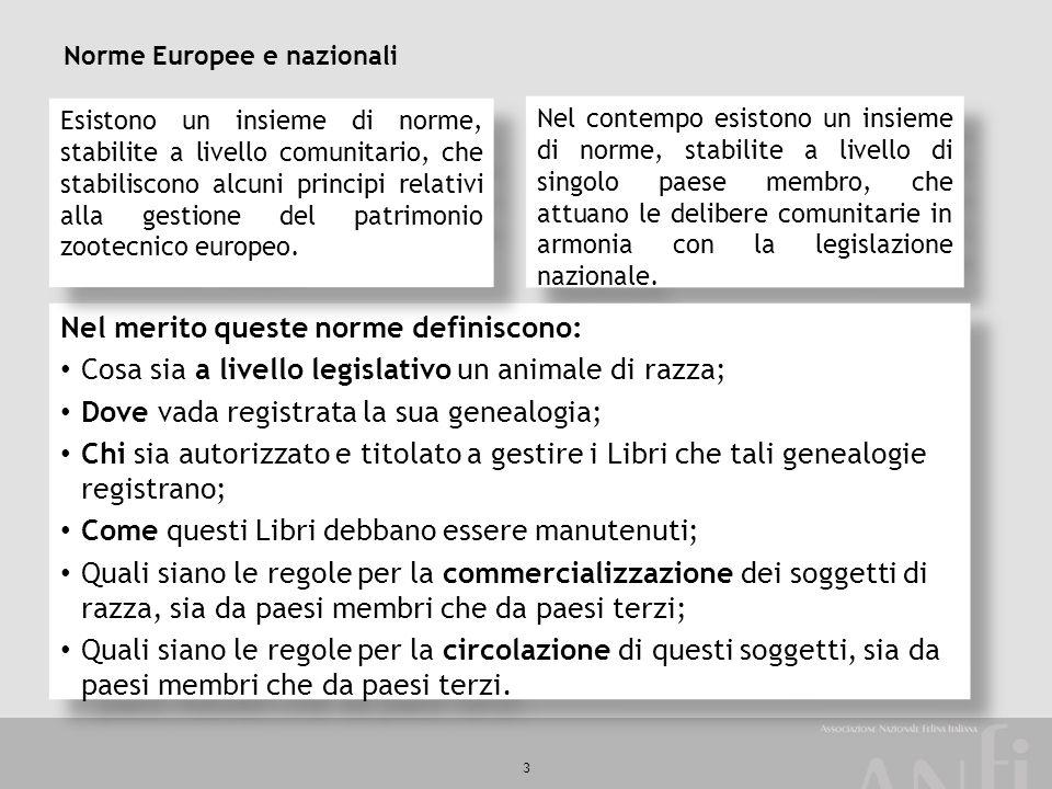 3 Norme Europee e nazionali Nel contempo esistono un insieme di norme, stabilite a livello di singolo paese membro, che attuano le delibere comunitari