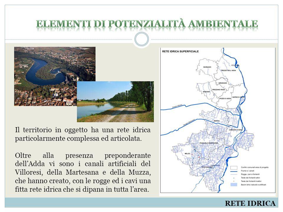 RETE IDRICA Il territorio in oggetto ha una rete idrica particolarmente complessa ed articolata.