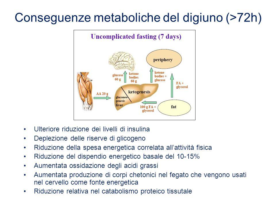 Ulteriore riduzione dei livelli di insulina Deplezione delle riserve di glicogeno Riduzione della spesa energetica correlata all'attività fisica Riduz
