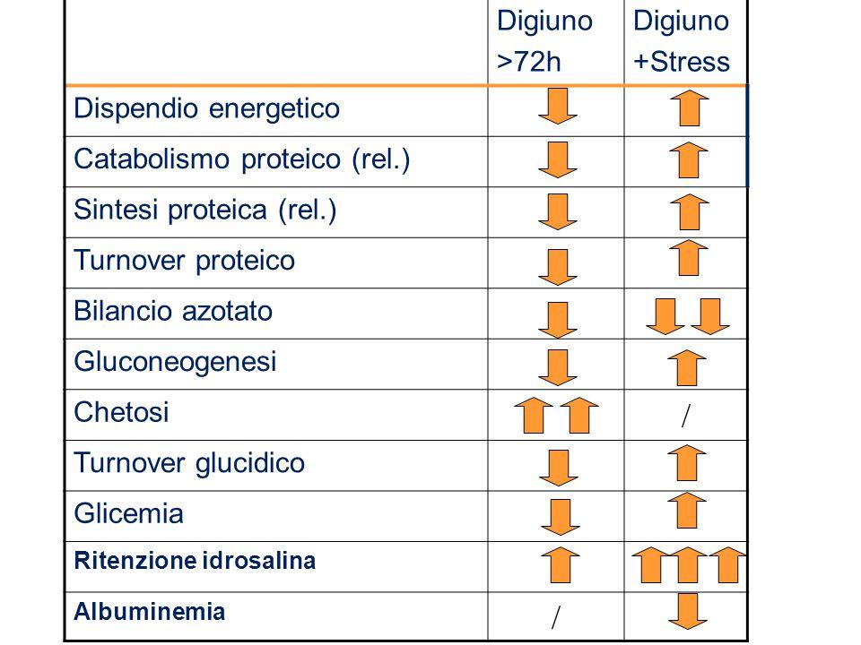 Digiuno >72h Digiuno +Stress Dispendio energetico Catabolismo proteico (rel.) Sintesi proteica (rel.) Turnover proteico Bilancio azotato Gluconeogenes