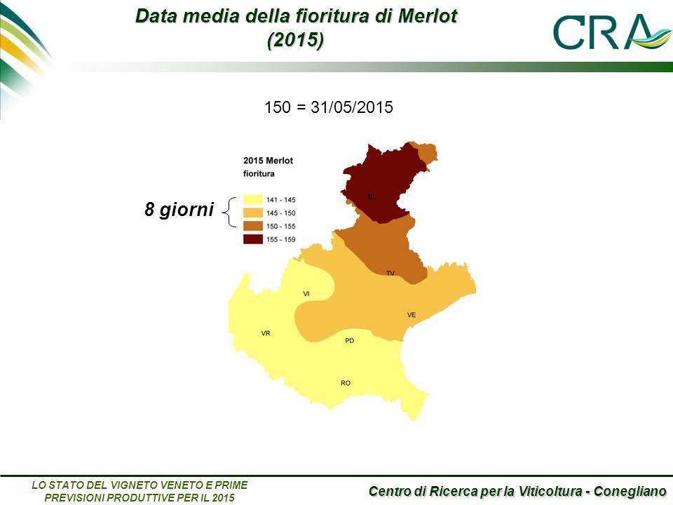Centro di Ricerca per la Viticoltura - Conegliano LO STATO DEL VIGNETO VENETO E PRIME PREVISIONI PRODUTTIVE PER IL 2015 Data media della fioritura di Merlot (2015) 150 = 31/05/2015 8 giorni