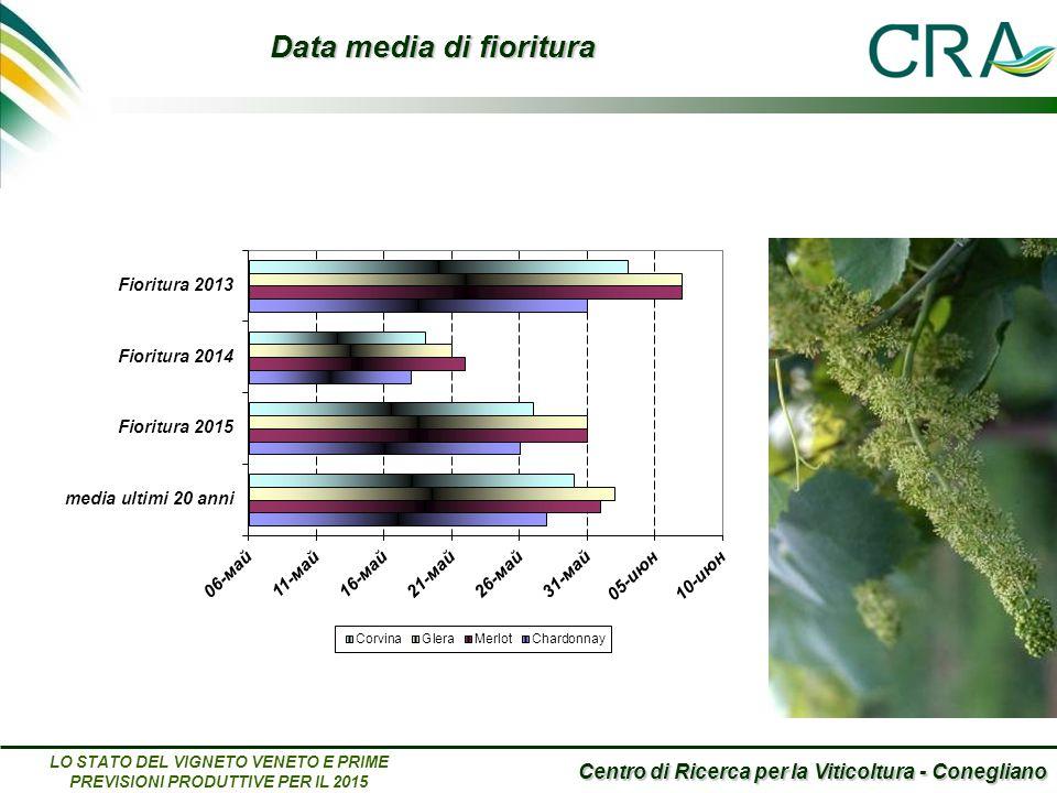 Centro di Ricerca per la Viticoltura - Conegliano LO STATO DEL VIGNETO VENETO E PRIME PREVISIONI PRODUTTIVE PER IL 2015 Data media di fioritura
