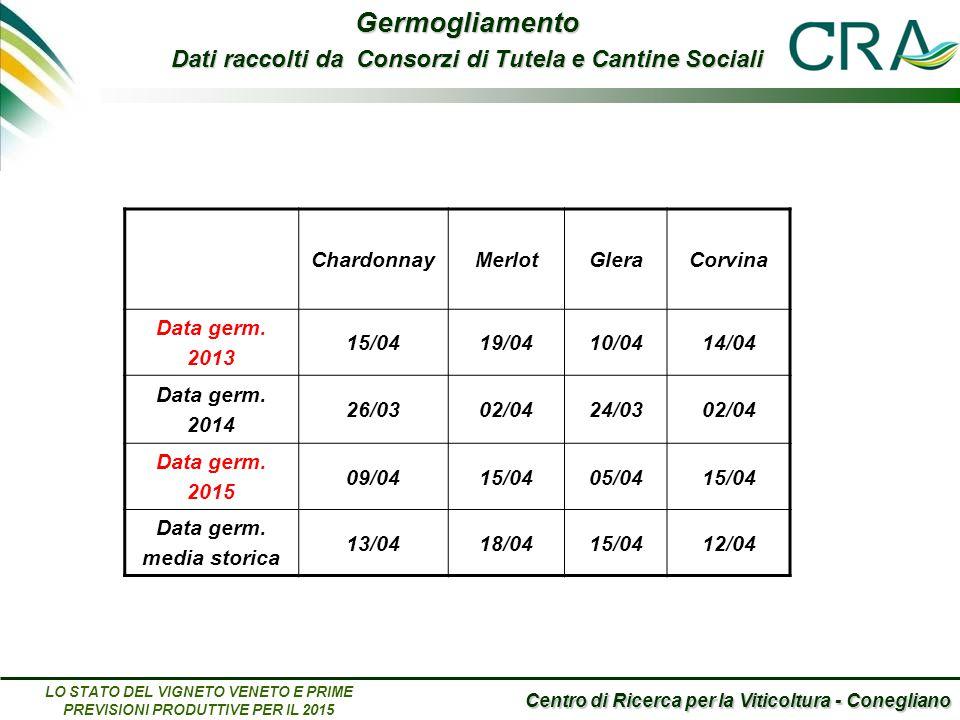 Centro di Ricerca per la Viticoltura - Conegliano LO STATO DEL VIGNETO VENETO E PRIME PREVISIONI PRODUTTIVE PER IL 2015 ChardonnayMerlotGleraCorvina Data germ.