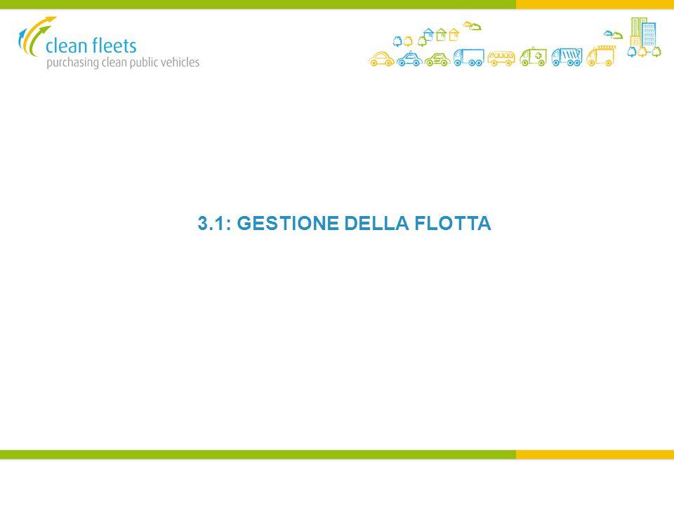 3.1: GESTIONE DELLA FLOTTA