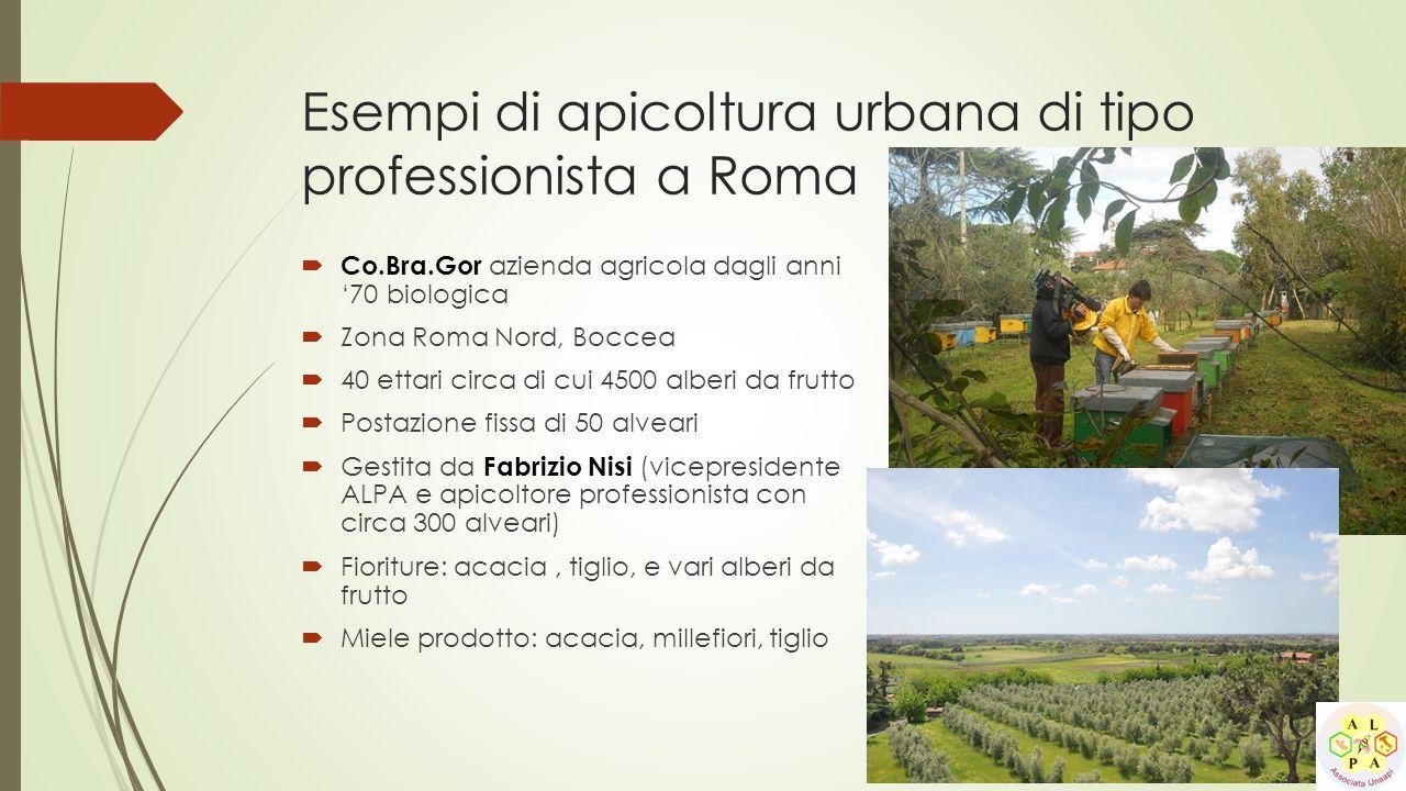  Co.Bra.Gor azienda agricola dagli anni '70 biologica  Zona Roma Nord, Boccea  40 ettari circa di cui 4500 alberi da frutto  Postazione fissa di 5
