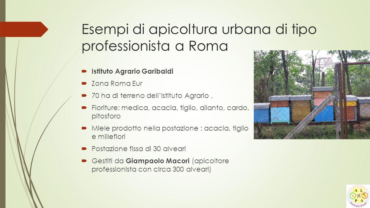  Istituto Agrario Garibaldi  Zona Roma Eur  70 ha di terreno dell'Istituto Agrario,  Fioriture: medica, acacia, tiglio, ailanto, cardo, pitosforo