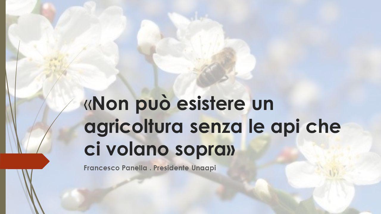 « Non può esistere un agricoltura senza le api che ci volano sopra» Francesco Panella. Presidente Unaapi