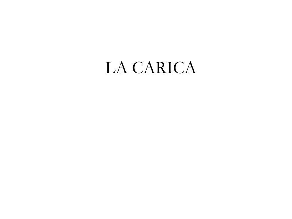 LA CARICA