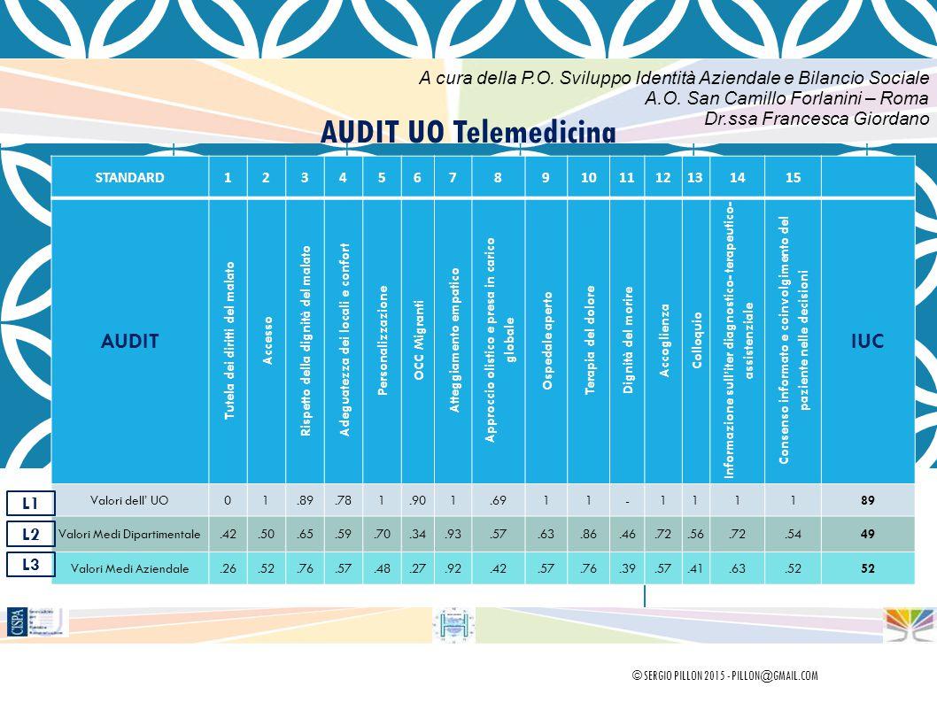 AUDIT UO Telemedicina STANDARD123456789101112131415 AUDIT Tutela dei diritti del malato Accesso Rispetto della dignità del malato Adeguatezza dei loca
