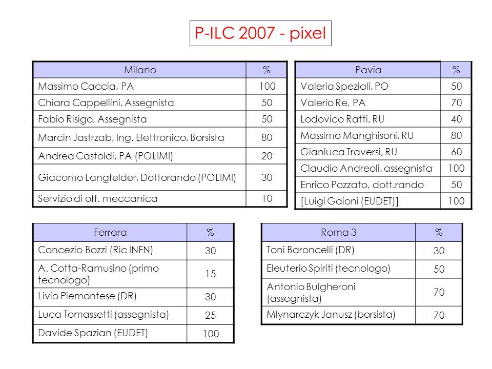 P-ILC 2007 - pixel Milano% Massimo Caccia, PA100 Chiara Cappellini, Assegnista50 Fabio Risigo, Assegnista50 Marcin Jastrzab, Ing.