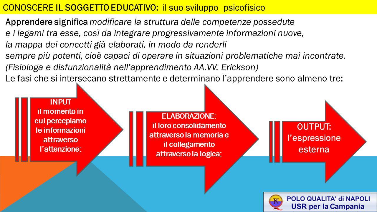 Apprendere significa modificare la struttura delle competenze possedute e i legami tra esse, così da integrare progressivamente informazioni nuove, la