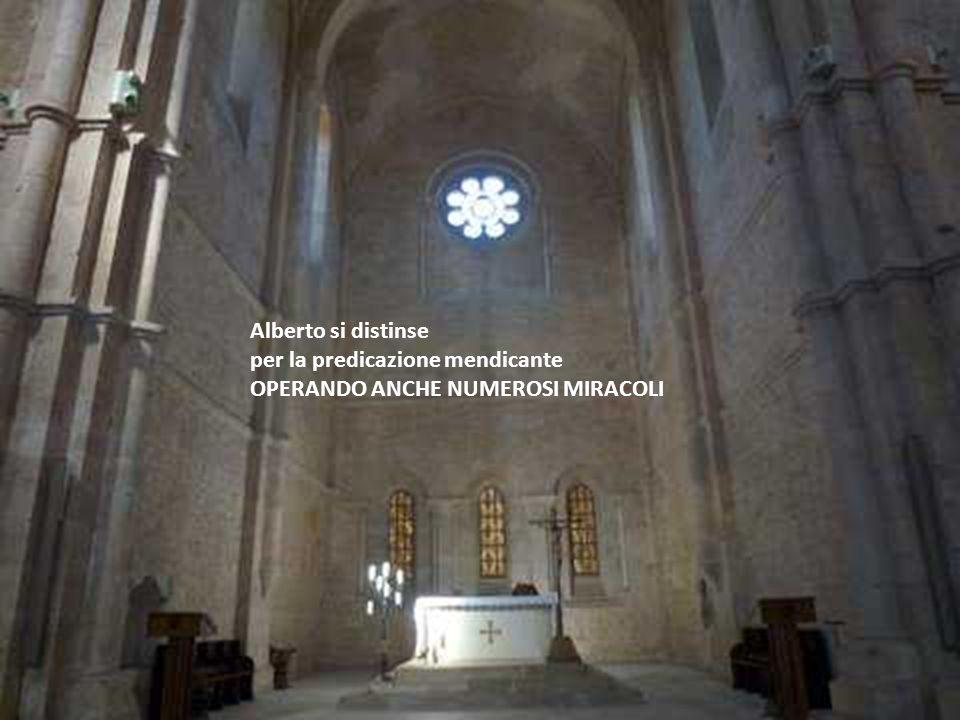 Alberto si distinse per la predicazione mendicante OPERANDO ANCHE NUMEROSI MIRACOLI