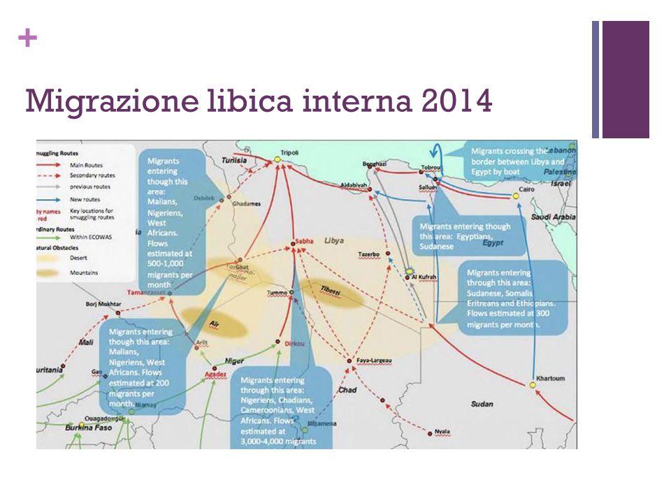 + Migrazione libica interna 2014