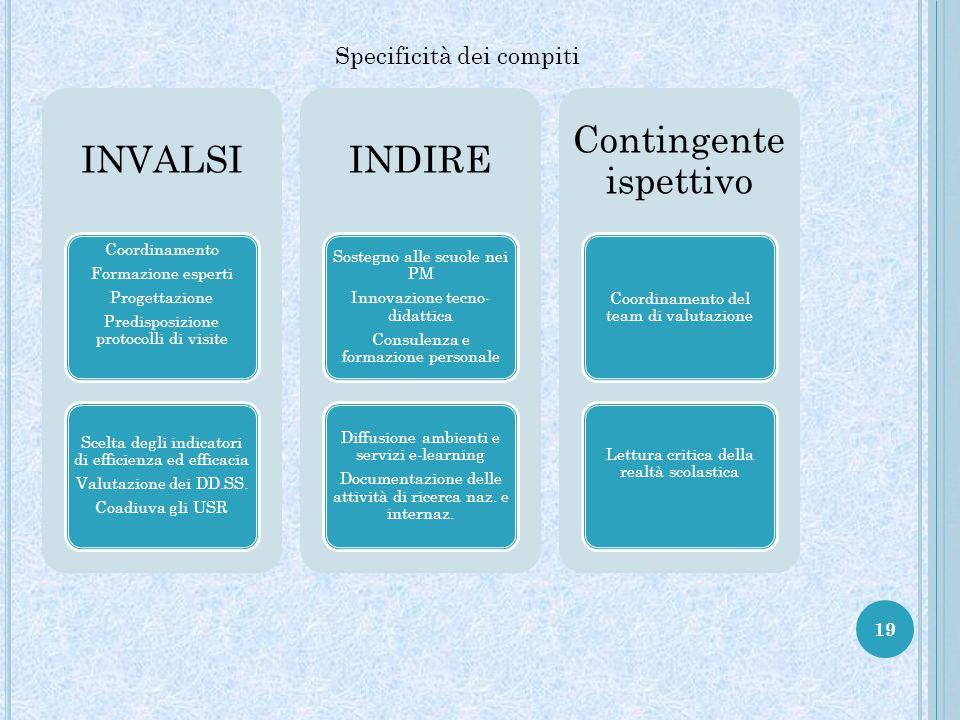 19 Specificità dei compiti INVALSI Coordinamento Formazione esperti Progettazione Predisposizione protocolli di visite Scelta degli indicatori di efficienza ed efficacia Valutazione dei DD.SS.